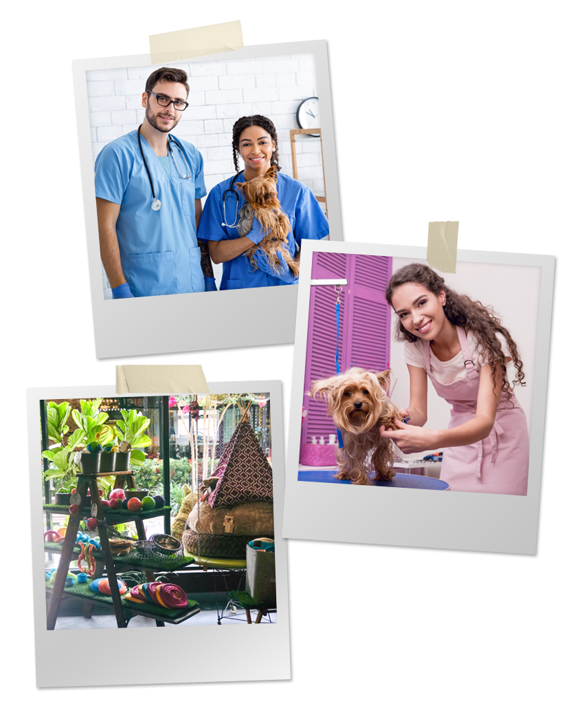 Collage of Polaroid photos of veterinarians, groomer, and pet supply store