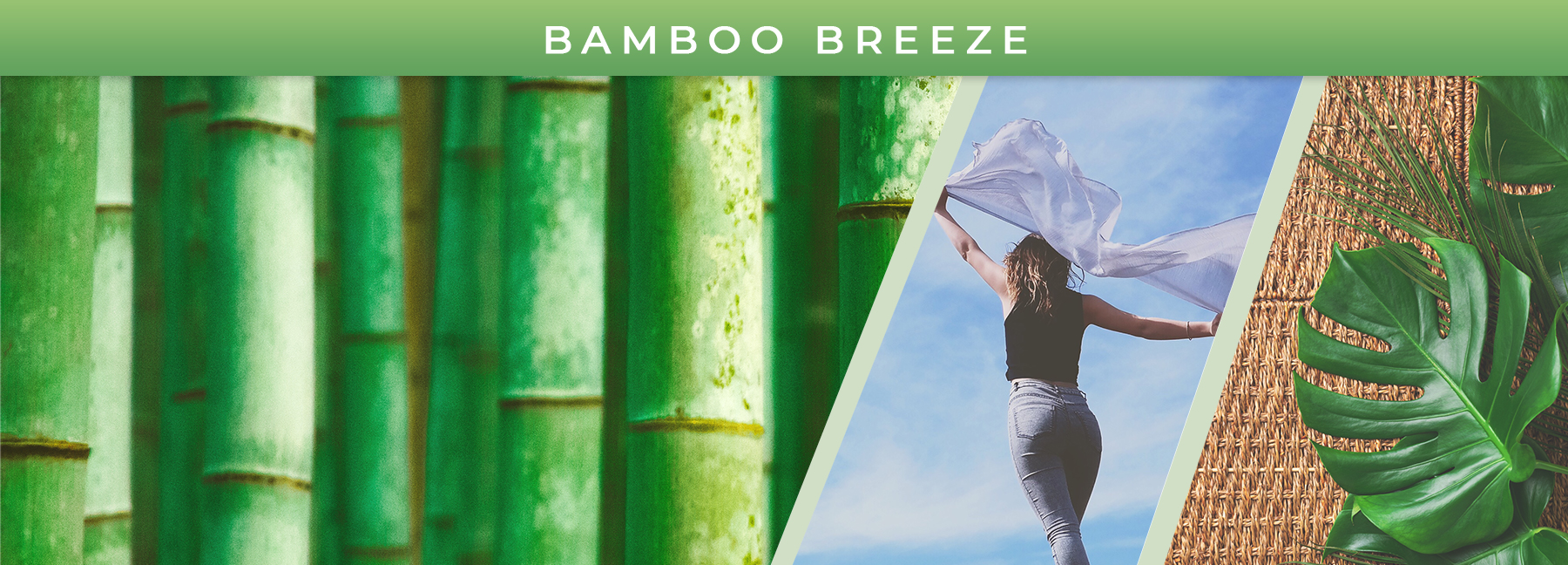 Bamboo Breeze fragrance elements
