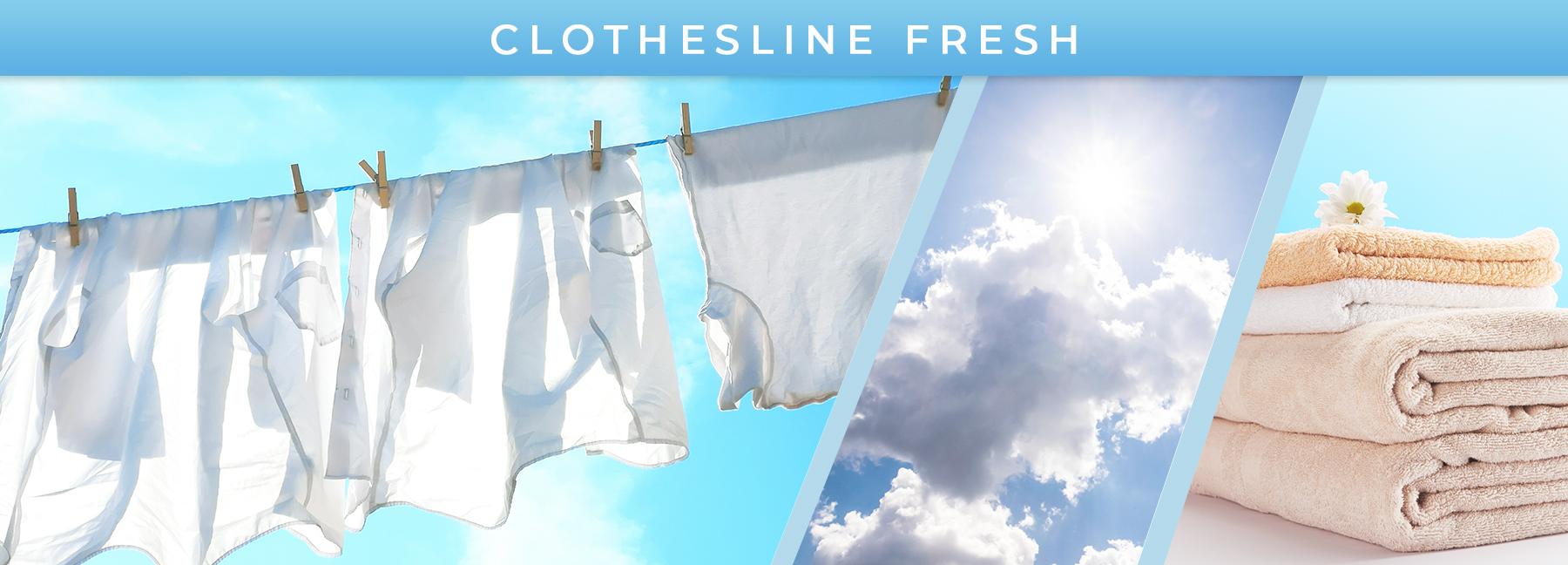 Clothesline Fresh fragrance elements