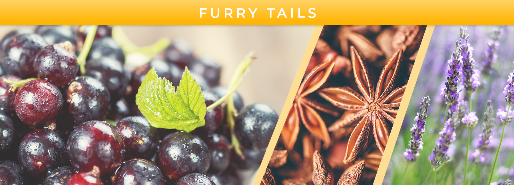 Furry Tails fragrance elements