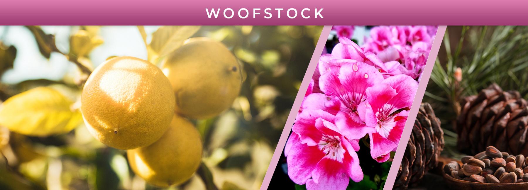 Woofstock fragrance elements