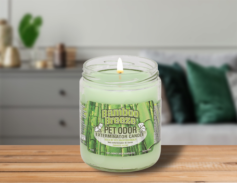 Lit Bamboo Breeze 13oz Jar Candle on table in living room