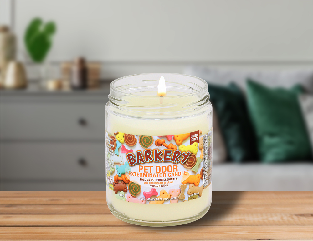 Lit Barkery 13oz Jar Candle on table in living room