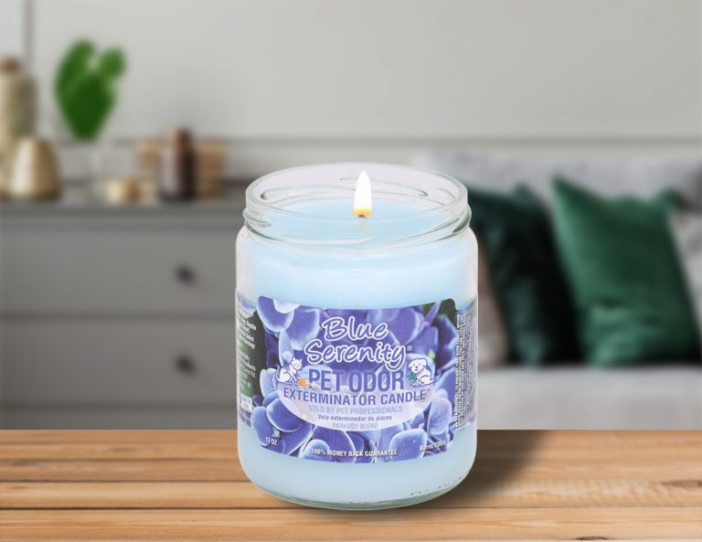Lit Blue Serenity 13oz Jar Candle on table in living room