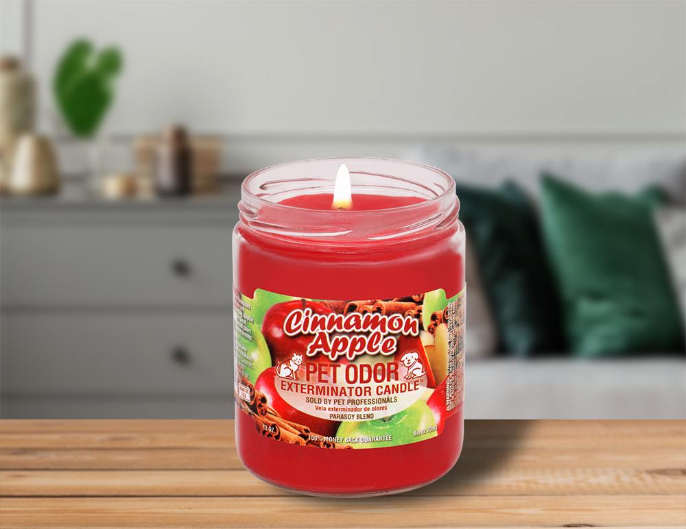 Lit Cinnamon Apple 13oz Jar Candle on table in living room