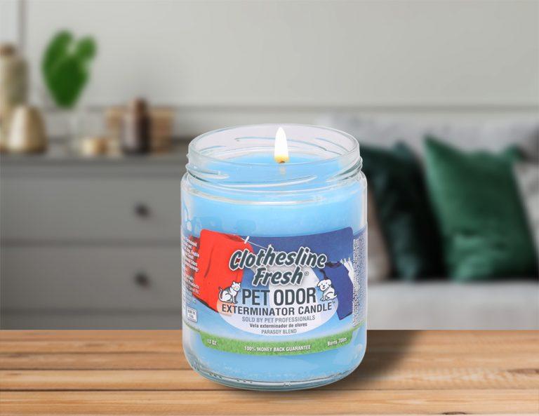 Lit Clothesline Fresh 13oz Jar Candle on table in living room