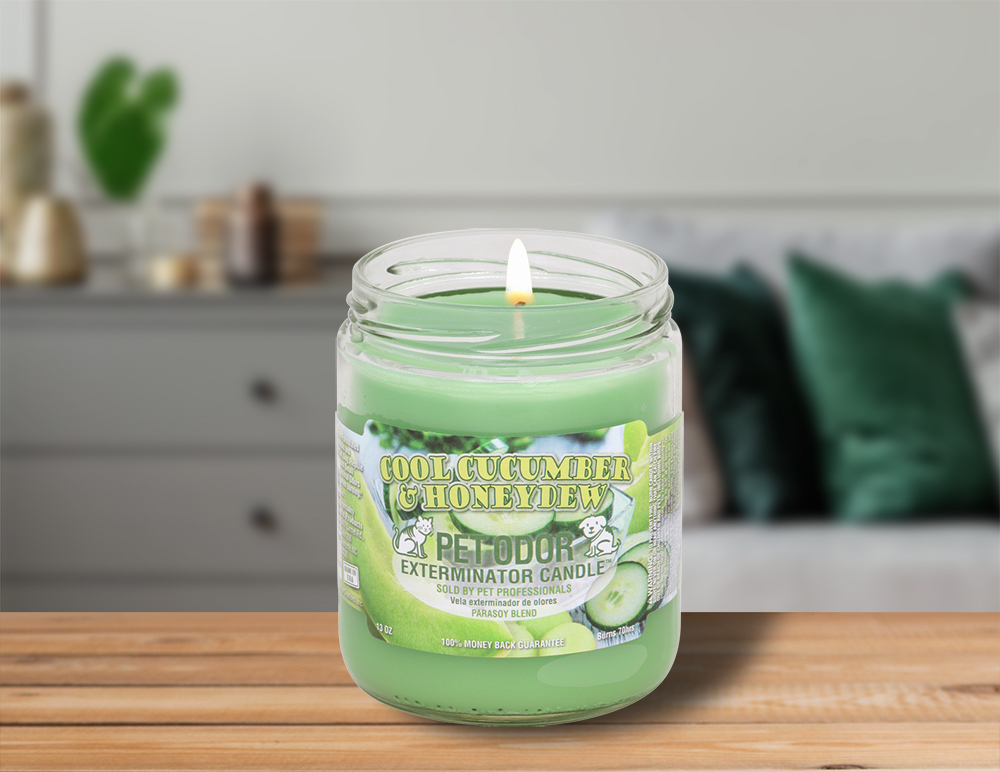 Lit Cool Cucumber & Honeydew 13oz Jar Candle on table in living room