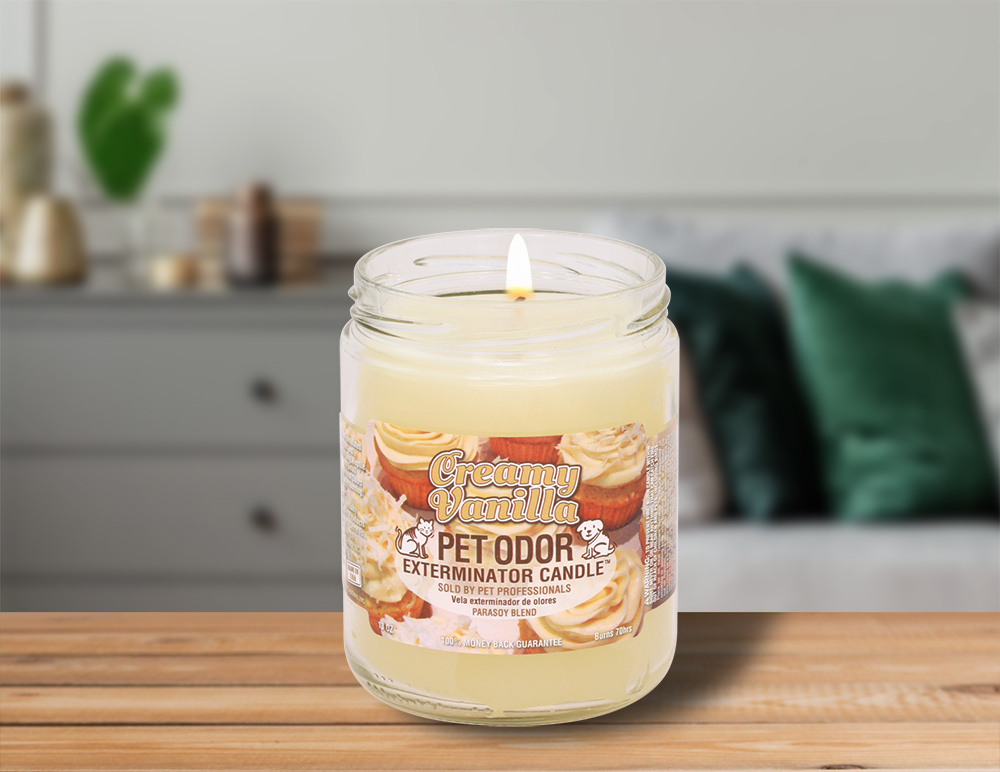 Lit Creamy Vanilla 13oz Jar Candle on table in living room