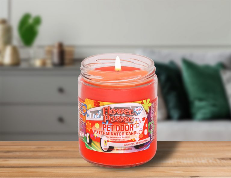 Lit Flower Power 13oz Jar Candle on table in living room
