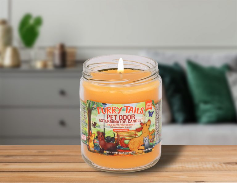 Lit Furry Tails 13oz Jar Candle on table in living room