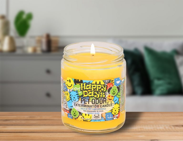 Lit Happy Days 13oz Jar Candle on table in living room
