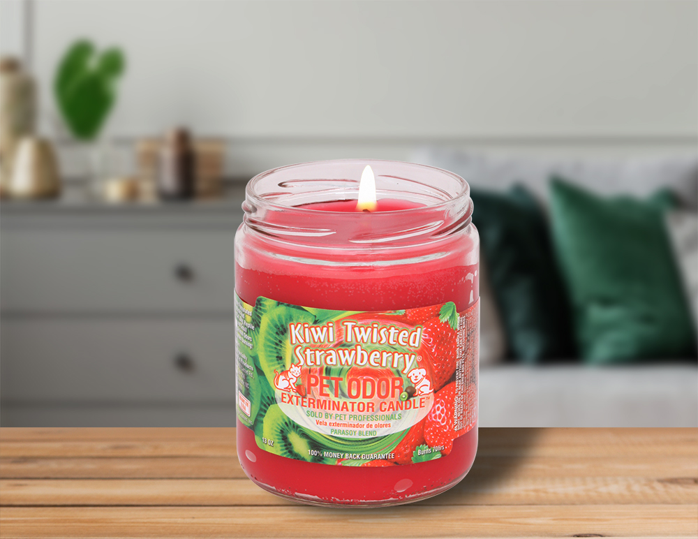Lit Kiwi Twisted Strawberry 13oz Jar Candle on table in living room