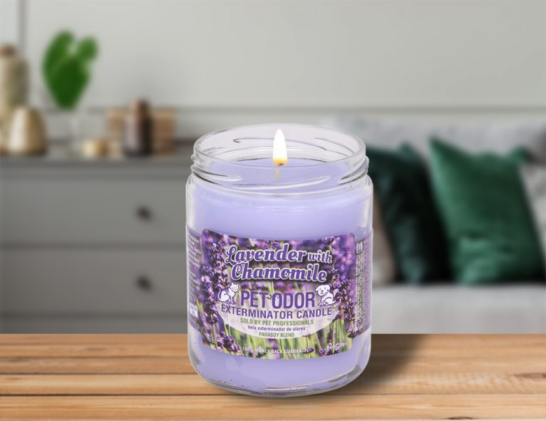 Lit Lavender with Chamomile 13oz Jar Candle on table in living room