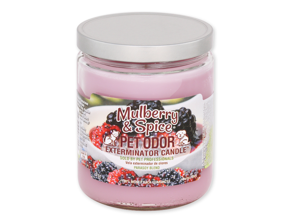 Mulberry & Spice 13oz Jar Candle