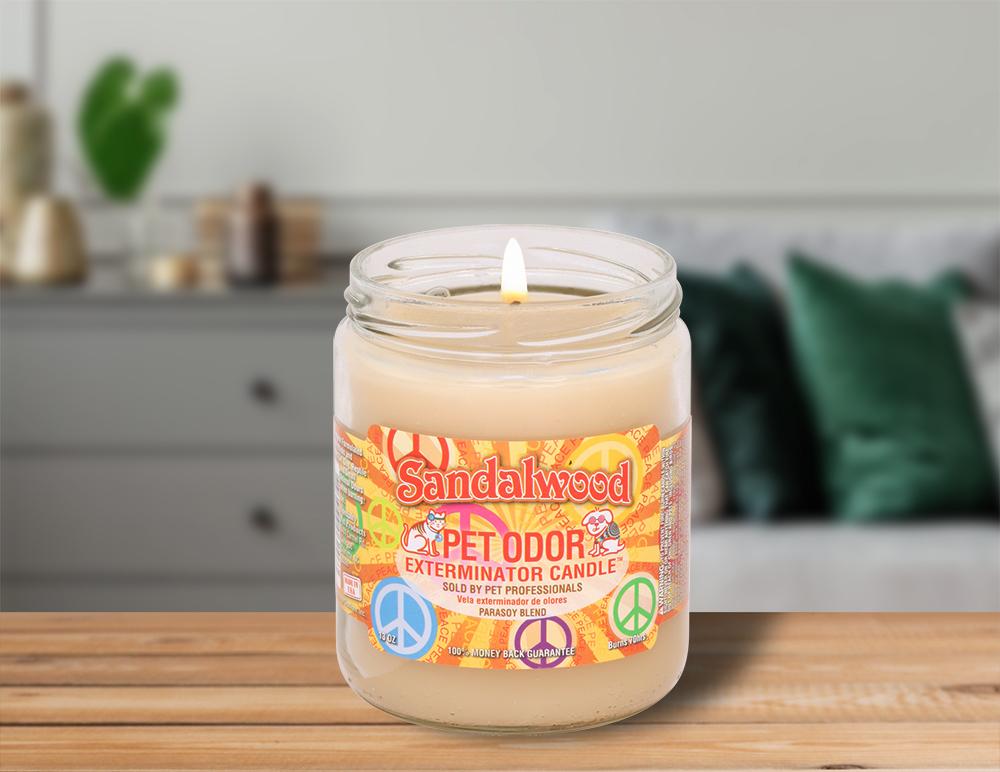 Lit Sandalwood 13oz Jar Candle on table in living room