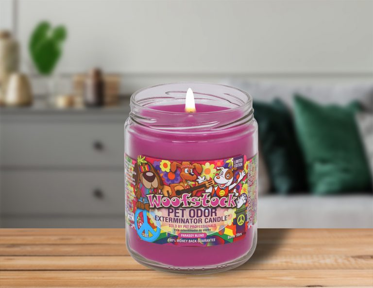 Lit Woofstock 13oz Jar Candle on table in living room