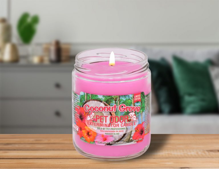Lit Coconut Grove 13oz Jar Candle on table in living room
