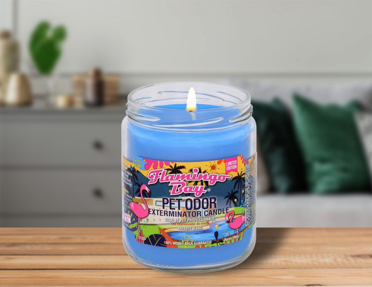 Lit Flamingo Bay 13oz Jar Candle on table in living room