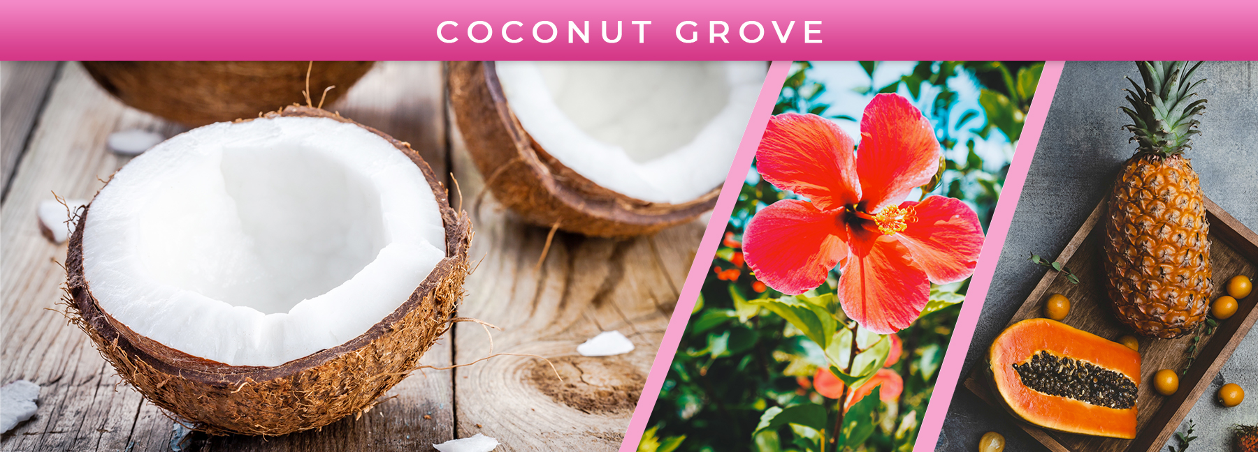 Coconut Grove fragrance elements