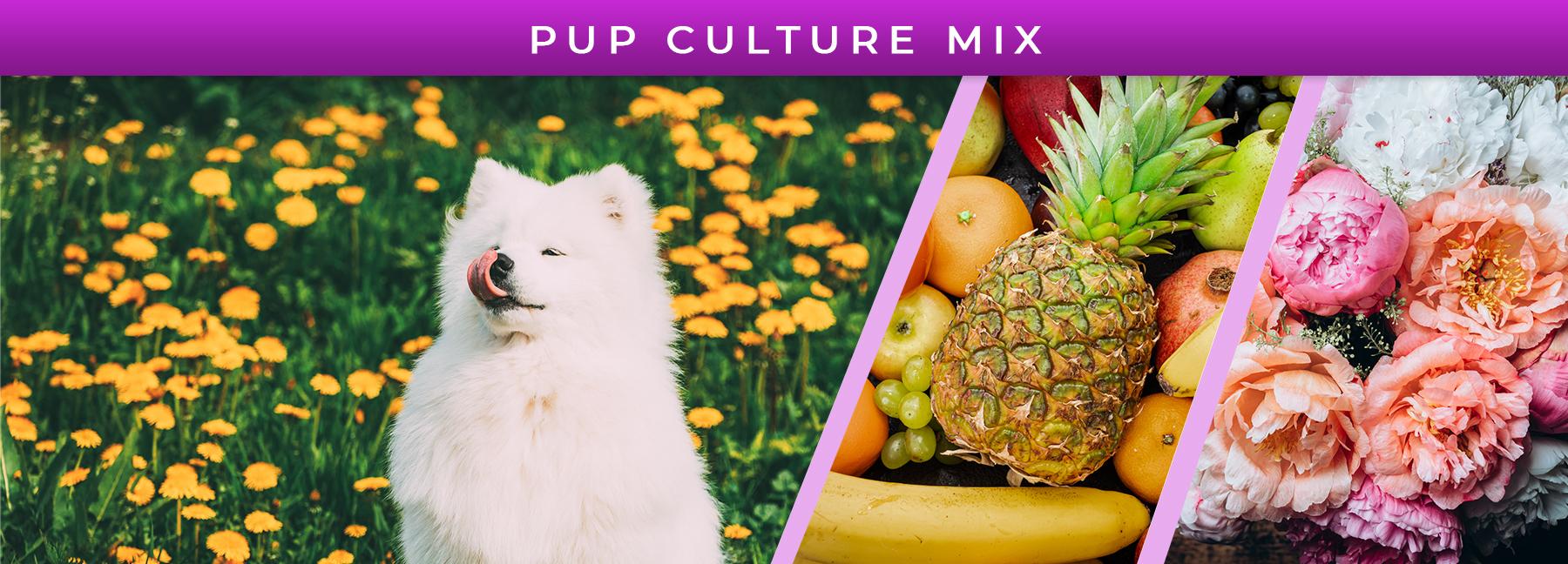 Pup Culture Mix fragrance elements