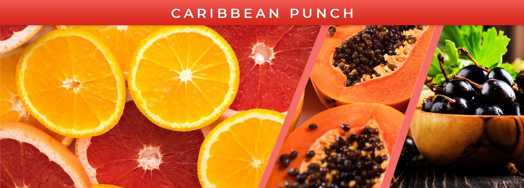 Caribbean Punch fragrance elements