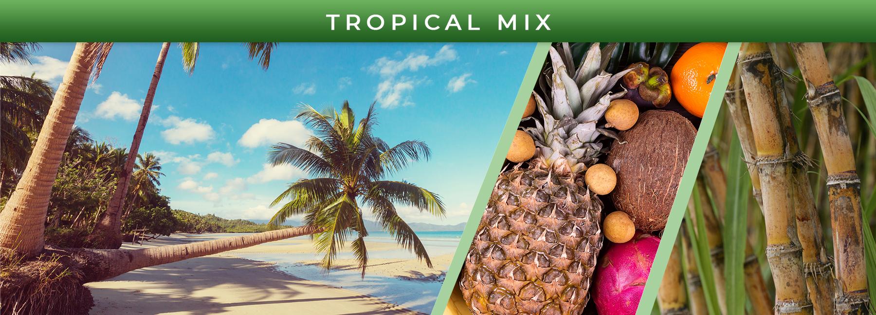 Tropical Mix fragrance elements
