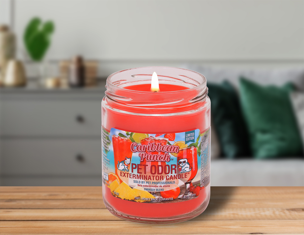 Lit Caribbean Punch 13oz Jar Candle on table in living room