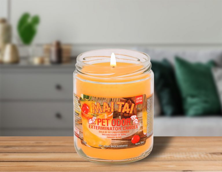 Lit Mai Tai 13oz Jar Candle on table in living room